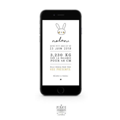 Faire-part naissance lapin électronique à personnaliser en ligne et à envoyer à vos proches par SMS ou e-mail. Faire-part lapin naïf - La Pirate
