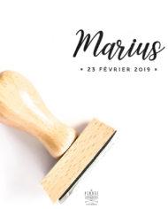 Tampon naissance personnalisé Marius, délicat