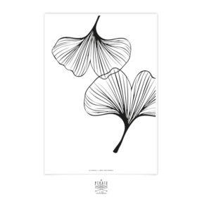 Affiche déco Gingko, minimaliste et monochrome pour créer un mur de cadre original